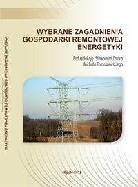 Wybrane zagadnienia gospodarki remontowej energetyki